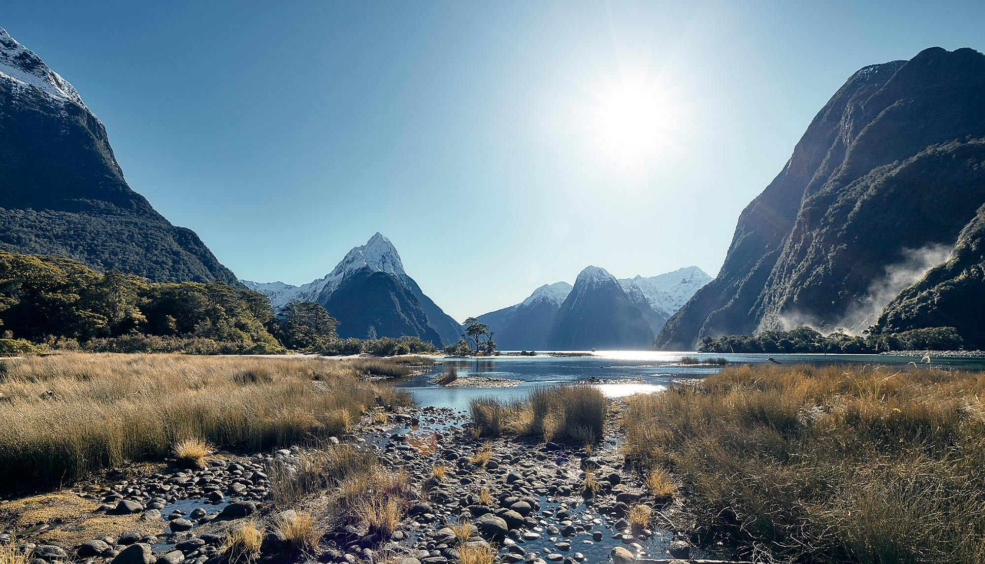 Milford Sound, Chris Lewis